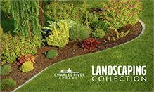 Landscaping - Look Book